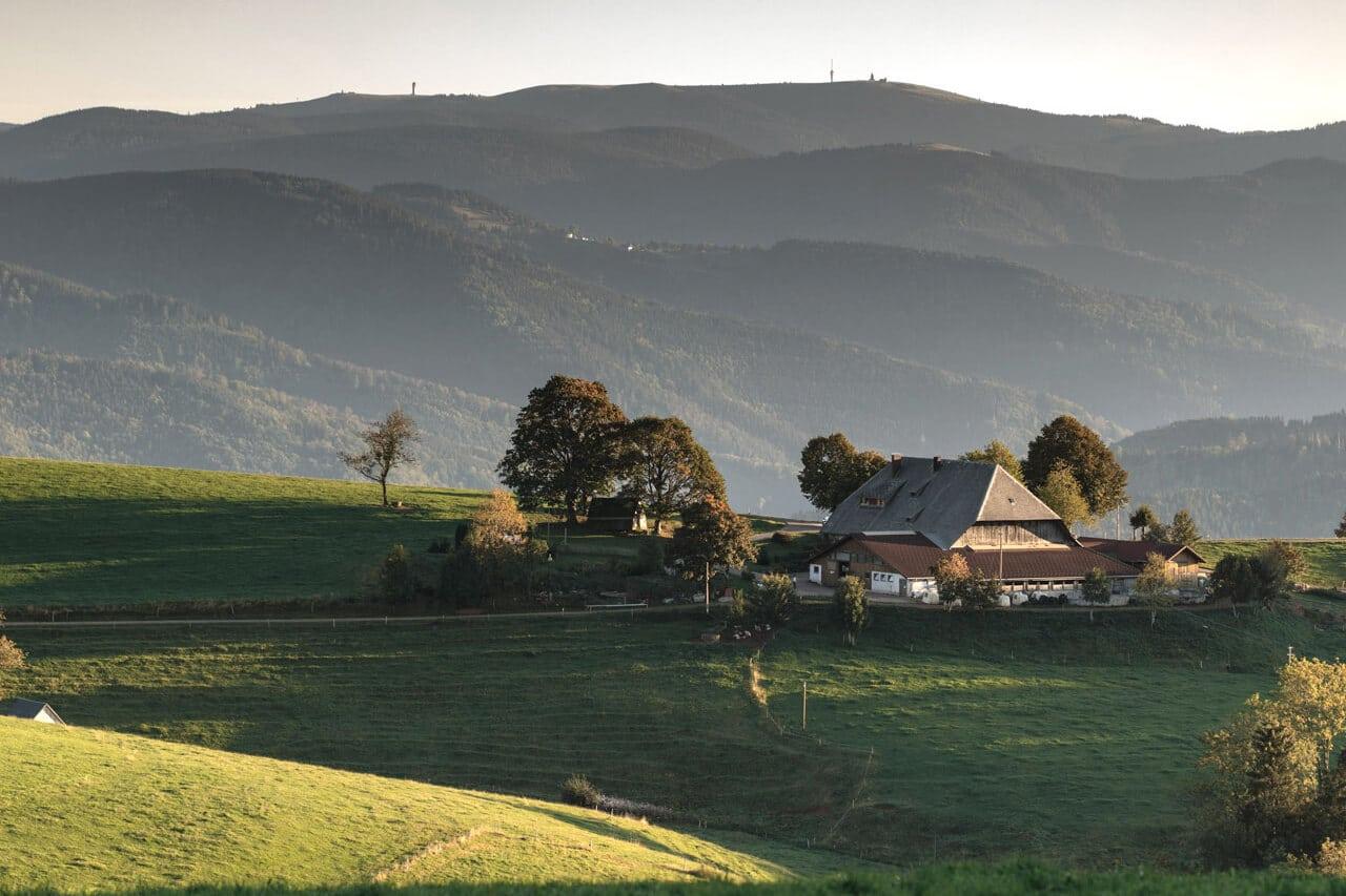 Freuen Sie sich auf schöne Wanderungen, z.B. zu diesem echten Schwarzwälder Bauernhof